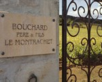 BPF_Porte_Montrachet1_600px_450px-310x207