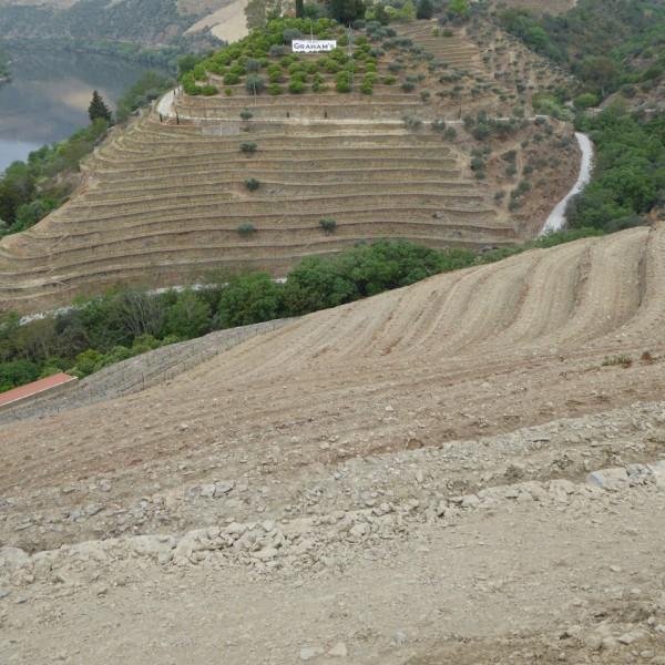The new terraces below Malvedos