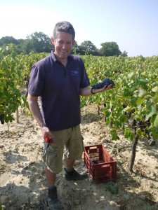 Simon in the vineyard 2012