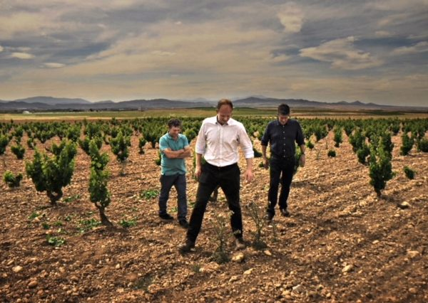 Simon and William 'moodily' inspecting some vines in Spain...