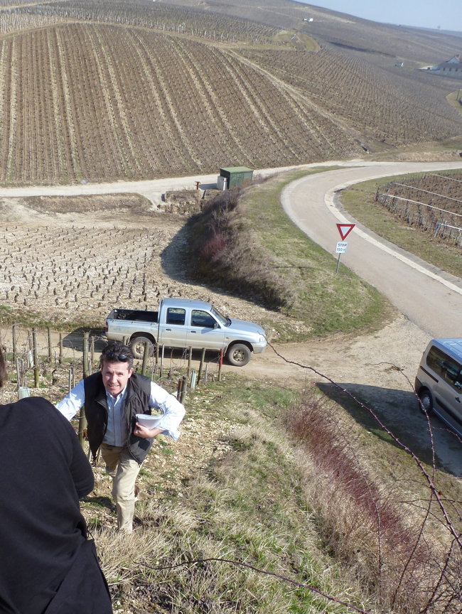 Declan climbing the bowl of Grand Crus in Chablis