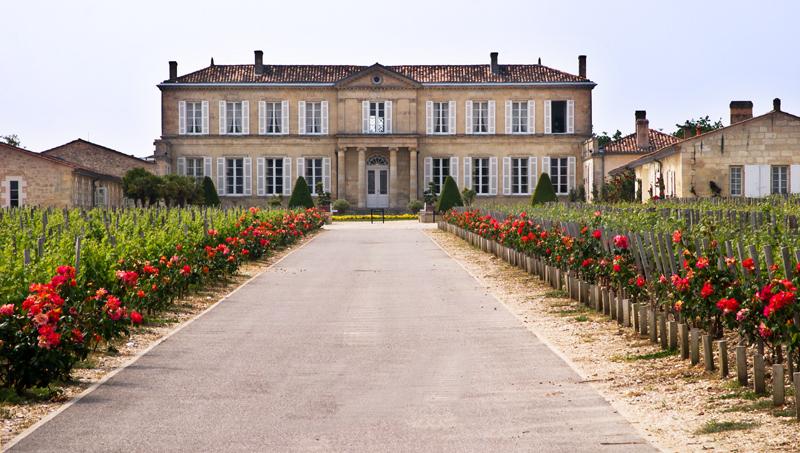 Ch Branaire Ducru